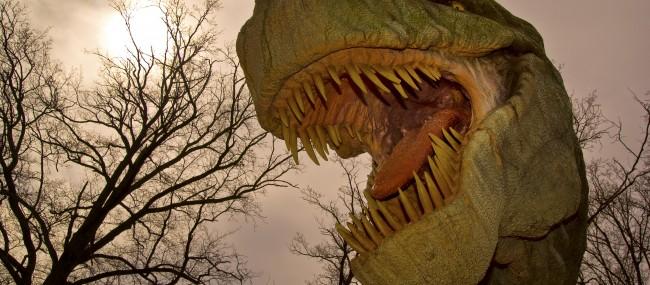 Des globules rouges de T. rex